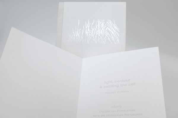 light, contour & exciting the cell (artist book)